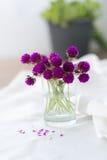 Composizione di piccoli, fiori delicati, meravigliosamente presentati sopra Fotografia Stock