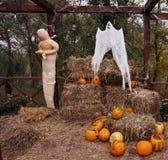 Composizione di tema in Halloween che consiste delle zucche, della mummia e del fieno arancio fotografie stock libere da diritti