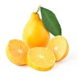 Composizione di un limone con una foglia, due metà e Fotografia Stock