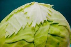 Composizione di verdure, natura morta dei pomodori rossi, foglie di cavolo verde fresco Fotografia Stock Libera da Diritti