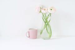 Composizione disegnata con i ranunculos rosa Immagine Stock