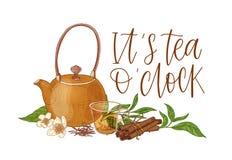 Composizione elegante con la teiera, la tazza di vetro trasparente con l'immersione del tè, le foglie fresche, i fiori, i bastoni illustrazione vettoriale
