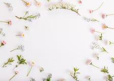 Composizione festiva nel fiore sui precedenti bianchi Vista ambientale Fotografia Stock