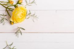 Composizione festiva nel fiore sui precedenti bianchi Vista ambientale immagine stock