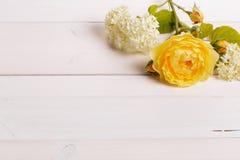 Composizione festiva nel fiore sui precedenti bianchi Vista ambientale fotografia stock libera da diritti