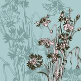 Composizione floreale d'annata con i wildflowers Immagini Stock