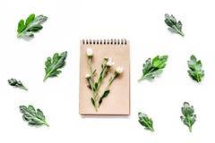 Composizione floreale Germogli e foglie sul taccuino sulla vista superiore del fondo bianco immagini stock libere da diritti