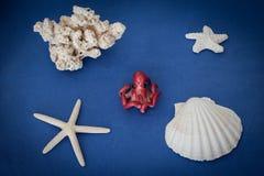 Composizione marina Immagine Stock