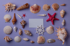 Composizione marina con il biglietto da visita Fotografia Stock