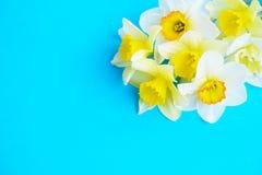 Composizione minimalistic tenera nei fiori della molla sulla superficie di struttura Bella decorazione femminile della pianta per Immagine Stock