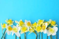 Composizione minimalistic tenera nei fiori della molla sulla superficie di struttura Bella decorazione femminile della pianta per Immagini Stock