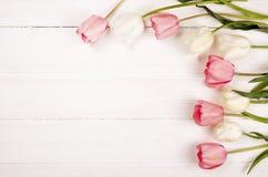 Composizione minimalistic tenera nei fiori della molla sulla superficie di struttura Bella decorazione femminile della pianta per Fotografie Stock Libere da Diritti