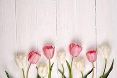 Composizione minimalistic tenera nei fiori della molla sulla superficie di struttura Bella decorazione femminile della pianta per Fotografia Stock