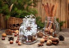 Composizione in Natale con le spezie ed i dadi Fotografia Stock