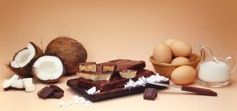 Composizione nel fondente della noce di cocco con gli ingredienti fotografia stock libera da diritti