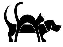 Composizione nel gatto e nel cane Immagine Stock