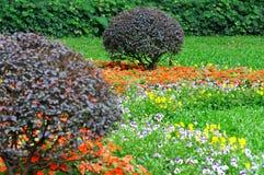 Composizione nel giardino, cespuglio e mazzo di fiori Fotografia Stock Libera da Diritti