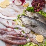 Composizione nel pesce di cousine dell'alimento, ingrediente per mangiare fotografia stock libera da diritti