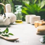 Composizione nel tè sul fondo tropicale delle foglie Fotografie Stock