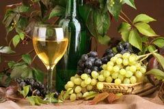 Composizione nel vino Immagine Stock