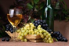 Composizione nel vino Immagine Stock Libera da Diritti