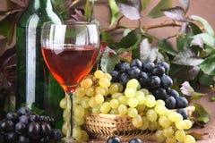 Composizione nel vino Fotografia Stock Libera da Diritti
