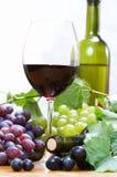 Composizione nel vino fotografie stock libere da diritti