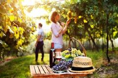 Composizione nel vino e nell'uva Fotografie Stock