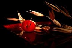 Composizione nella ciliegia Fotografia Stock