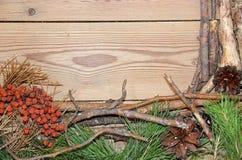 Composizione nella decorazione sui bordi di legno del fondo fatti di branc Immagini Stock