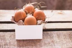Composizione nella foto delle uova di Pasqua Immagine Stock