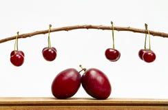 Composizione nella frutta Immagini Stock Libere da Diritti