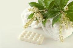 Composizione nella stazione termale con la barra ed i tovaglioli del sapone Immagine Stock