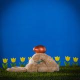 Composizione in Pasqua con coniglio abile, capace, allegro e immagini stock