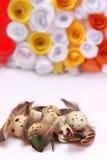 Composizione in Pasqua con la decorazione festiva dei fiori ed uova degli ossequi tradizionali le mini Immagini Stock