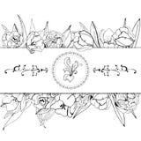 Composizione per la cartolina d'auguri o dell'invito dei fiori sboccianti del tulipano Schizzo monocromatico disegnato a mano su  illustrazione vettoriale
