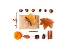 Composizione piana in disposizione con le foglie fotografia stock