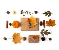 Composizione piana in disposizione con le foglie di autunno fotografia stock libera da diritti