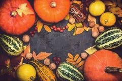 Composizione in ringraziamento della zucca del raccolto di autunno su un fondo nero Immagine Stock