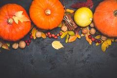 Composizione in ringraziamento della zucca del raccolto di autunno su un fondo nero Immagini Stock