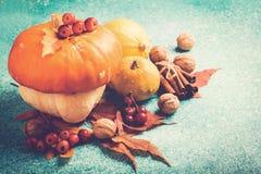 Composizione in ringraziamento della zucca di autunno con le foglie ed i dadi Fotografia Stock