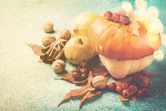 Composizione in ringraziamento della zucca di autunno con le foglie ed i dadi Immagini Stock