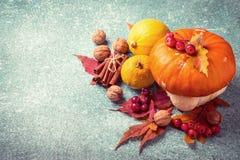Composizione in ringraziamento della zucca di autunno su un fondo blu Fotografia Stock Libera da Diritti