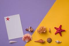 Composizione variopinta nel fondo di Seashels Fotografie Stock Libere da Diritti