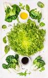 Composizione verde con insalata, le erbe selvagge, il cavolo cinese del bambino e vestirsi Fotografia Stock