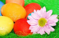 Composizione verde in Pasqua. Immagine Stock