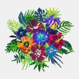 Composizione in vettore con le piante tropicali e fiori e struttura dipinta a mano illustrazione di stock