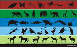 Composizione in vettore degli animali Fotografia Stock