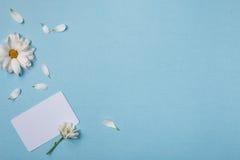 Composizione in vista superiore della primavera Fotografie Stock Libere da Diritti