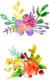 Composizioni nel fiore dell'acquerello Fotografie Stock